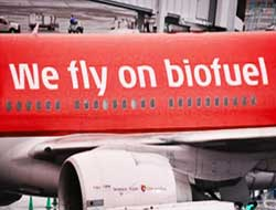 First Commercial Flight Using Biofuel Successful Energy