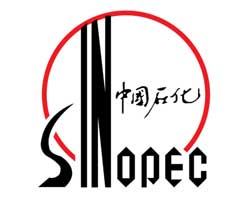 Sinopec starts up US$6 bn petchem/refinery project in China