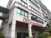 Deleum