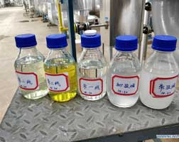Chinese jv project in Brunei starts up petchem complex