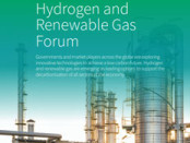 """Production costs of """"green"""" hydrogen to fall by 30% by 2030"""