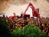Elkem to build biocarbon pilot plant in Canada