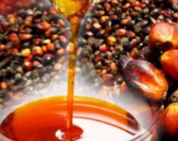 Malaysia unhappy with EU palm oil restrictions, files WTO complaint